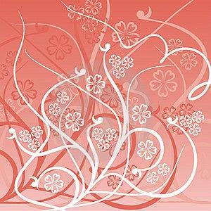 Popis: kvetinové pozadie, ilustrácie