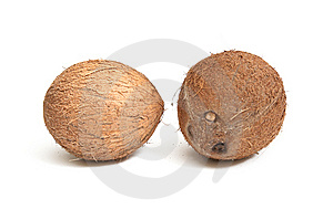 Two Coconuts On A White Backfround. Stock Photo - Image: 8003880