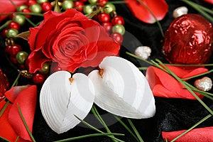 Red Rose Stock Image - Image: 8007851