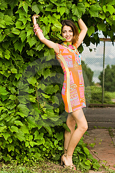 Attractive Girl Near The Bush Royalty Free Stock Photography - Image: 8011987