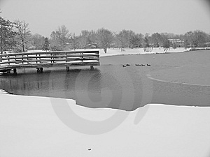 Winter Pond Stock Photography - Image: 8022232