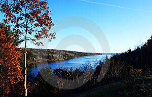 River & Oaks Royalty Free Stock Photo - Image: 8024245