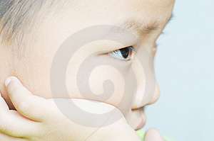 Absorbed Boy Royalty Free Stock Photography - Image: 8027107