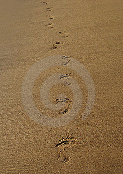 Steps On The Sand Royalty Free Stock Photo - Image: 8032885