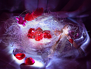 Hearts Are In A Nest Royalty Free Stock Photography - Image: 8033567