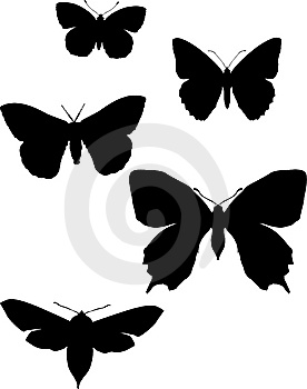 Five Silhouettes Of Butterflies Stock Images - Image: 8033994