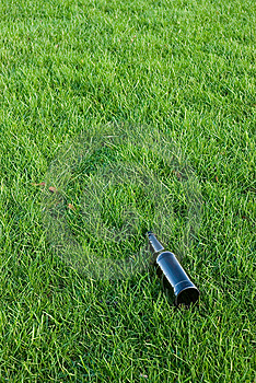 Free Stock Photo - Bottle in the grass