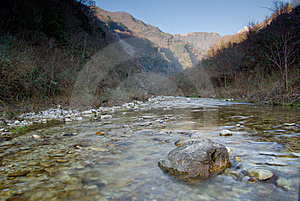 Stream In The Apuan Alps, Tuscany Royalty Free Stock Photos - Image: 8037648