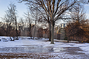 Frozen Ice On The Lawn Stock Photography - Image: 8049452