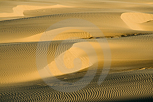 Sand Ripples Royalty Free Stock Images - Image: 8052539