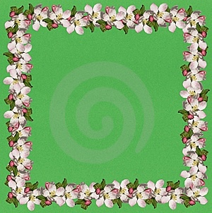 Apple Blossom Frame2 Royalty Free Stock Photos - Image: 8056238