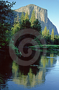El Capitan Yosemite Royalty Free Stock Photos - Image: 8063968