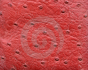 Red Reptile Leather Imitation Texture Stock Photo - Image: 8073390