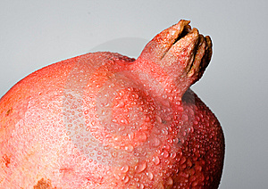 Pomegranate Stock Image - Image: 8075441