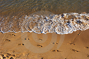 Footprints On The Beach Stock Photography - Image: 8076652