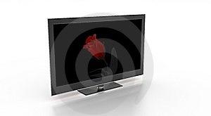 Stylish TV Showing A Rose. Stock Images - Image: 8084744