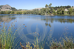 Tranquil Blue Lake Stock Photography - Image: 8099662