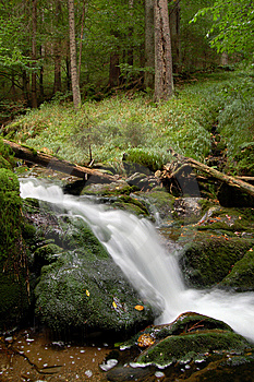 Waterfall In Bohemia Stock Images - Image: 8108494
