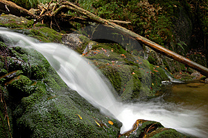 Waterfall In Bohemia Stock Images - Image: 8108504