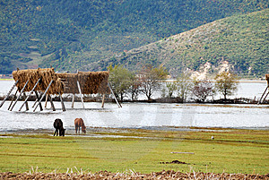 Lugu Lake Stock Photo - Image: 8120210