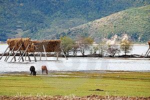 Lugu Lake Stock Photo - Image: 8120210