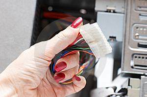 Woman Hand Assembles Computer Cable Royalty Free Stock Photo - Image: 8123095