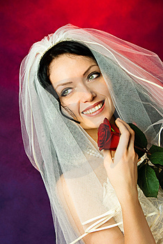 Beautiful Brunette Bride With A Red Rose Royalty Free Stock Image - Image: 8126306