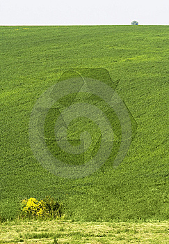 Recycling Symbol Royalty Free Stock Image - Image: 8128986