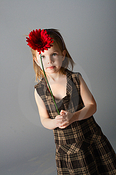 Girl With Red Flower Stock Image - Image: 8129851