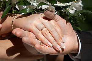 Hands With Wedding Rings Stock Photo - Image: 8133350