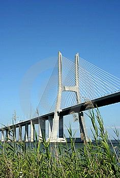 Vasco Gama Bridge Stock Images - Image: 8133764