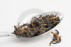 Green Tea Royalty Free Stock Photos - Image: 8142758