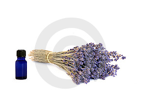 Lavender Herb Flowers Royalty Free Stock Photography - Image: 8142957