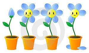 Historia Cerca De Una Flor Imagenes de archivo - Imagen: 8148994