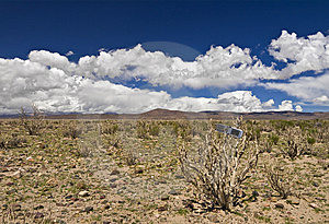 Lost In The Desert Royalty Free Stock Photos - Image: 8158488