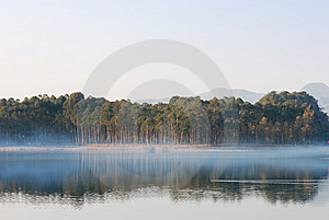 Fog Royalty Free Stock Images - Image: 8168579