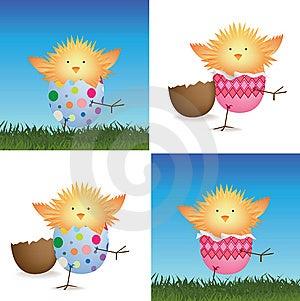 Set Of 4 Easter Chicks Stock Image - Image: 8169931