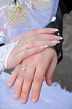 Hands Of A Newly-married Couple. Stock Images - Image: 8170384