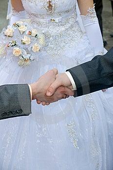 Hand Shake - A Congratulation. Royalty Free Stock Image - Image: 8170466