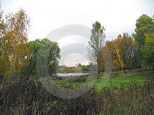 Pound 3 Stock Image - Image: 8177381