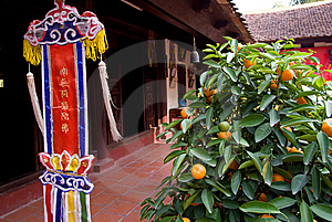 Orange Tree And Religious Pennant At Temple Stock Images - Image: 8182644