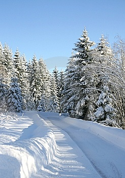 Winter Road Royalty Free Stock Photo - Image: 8186535