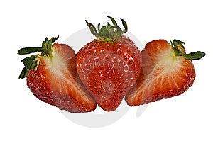 Fresa Imagen de archivo libre de regalías - Imagen: 8186596