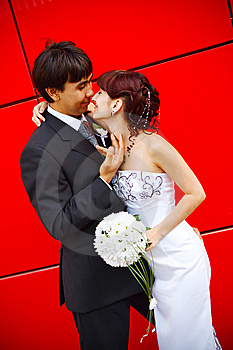 Bride And Groom Royalty Free Stock Photo - Image: 8188345