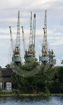 Cranes Royalty Free Stock Photo - Image: 829755