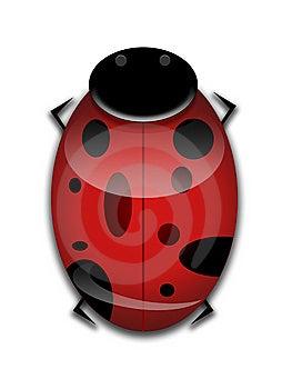 LadyBug Graphic Royalty Free Stock Photo - Image: 8208315