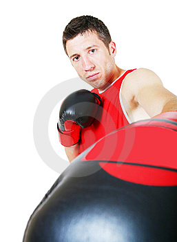 Boxer Stock Photo - Image: 8215300