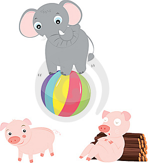 Performing Elephant Stock Photos - Image: 8221023