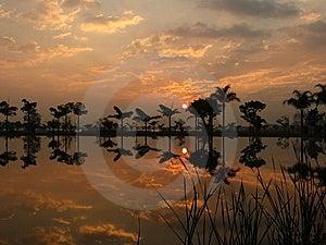 Beautiful Sunrise Reflected On Lake Stock Images - Image: 8227724