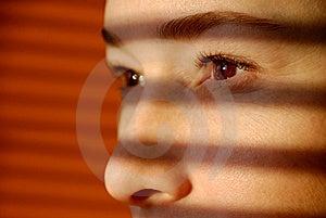 De Vrouw Kijkt Door Jaloezie Royalty-vrije Stock Afbeeldingen - Afbeelding: 8229399